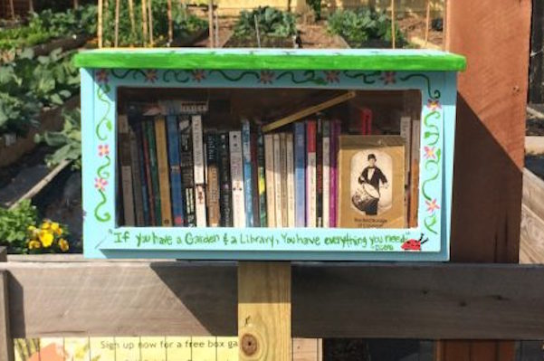 Little libraries, which can be seen popping up all over NKY, are one example of a grant-worthy small project